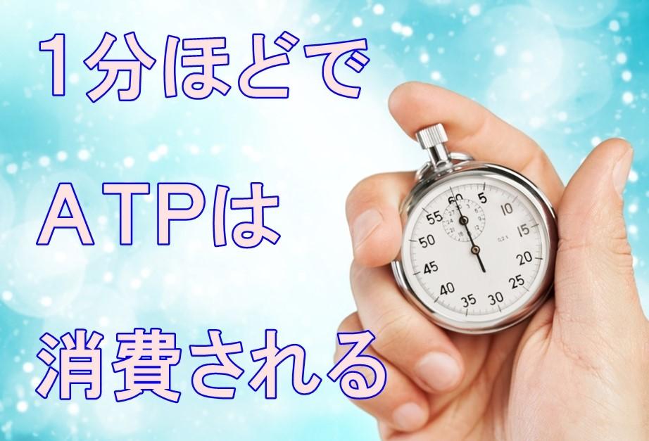 ATP 消費