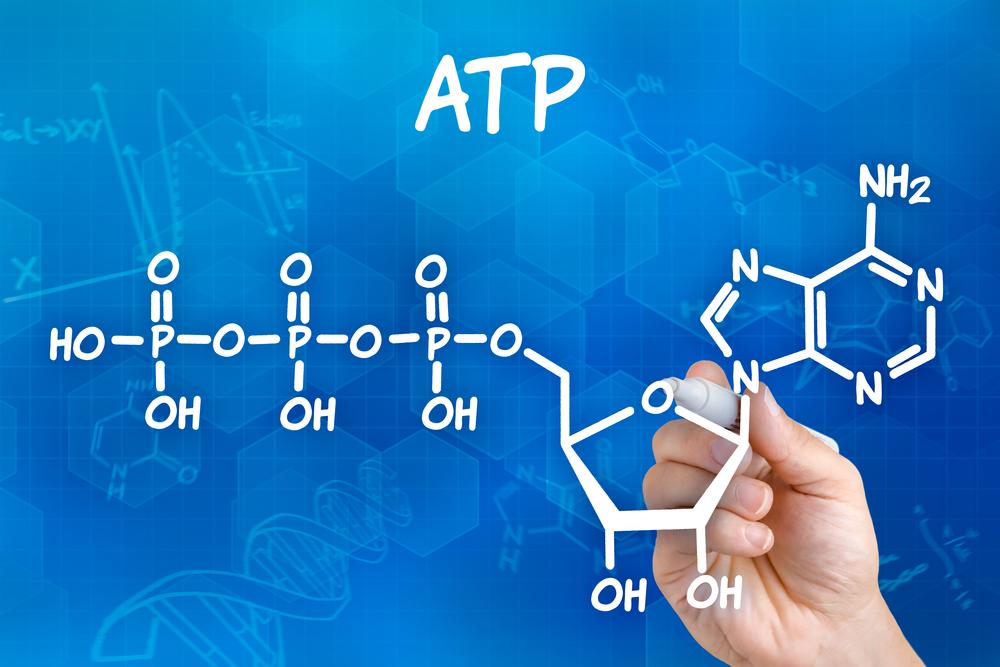 ATP アデノシン三リン酸 画像