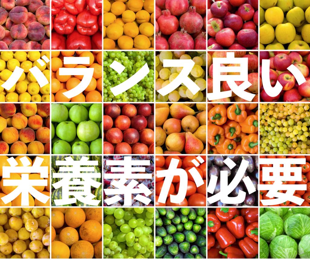 栄養素 セルセンシャル