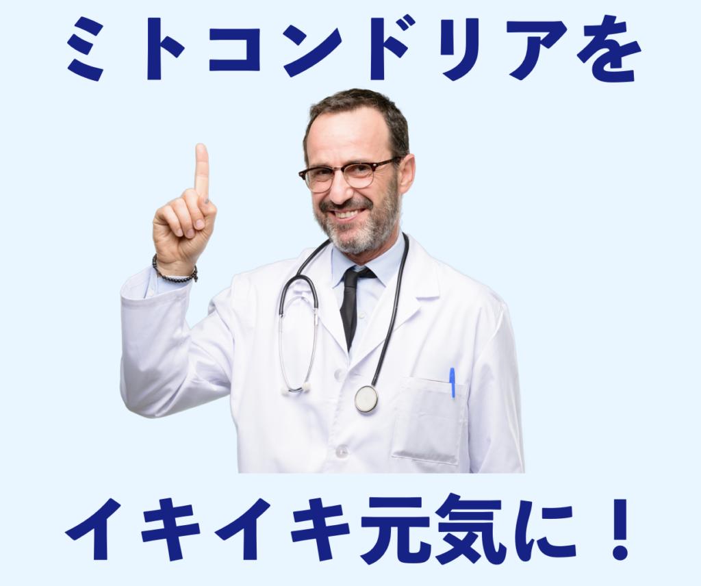 セルセンシャル(cellsentials)